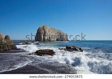 Large rocks on the coast of Chile near the city of Constitucion that are home to huge colonies of Peruvian Pelicans (Pelecanus thagus) and other seabirds. - stock photo