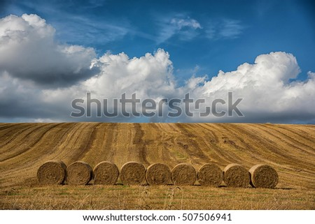 large rolls of Hay in field. Germany