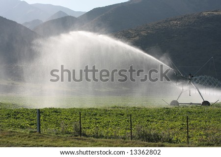 Large scale center pivot irrigation system late in the afternoon - stock photo