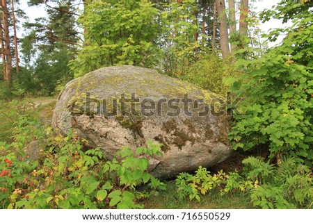 large stone in the woods, covered with moss