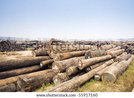 Large timber mill - stock photo