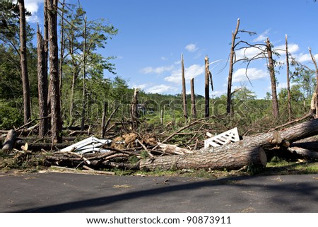 Large trees on ground after tornado.  Some limbs have been trimmed to allow the owner to enter the property. - stock photo