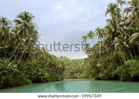 Large tropical river with palm trees on both shores