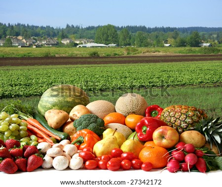Large variety of fresh fruit and vegetables, water droplets visible at 100% in front of the farmer's field. - stock photo