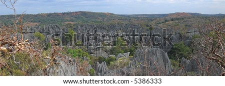 Large view on the top - Tsingy of Bemaraha Park - Madagascar - Panoramique. - stock photo