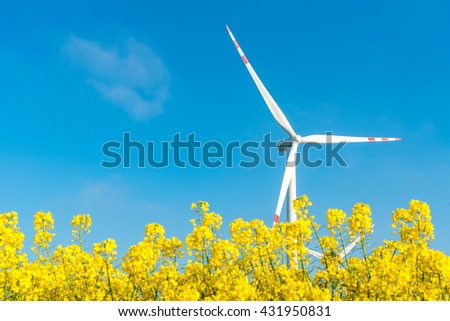 Large view on the windmill on the yellow rape field