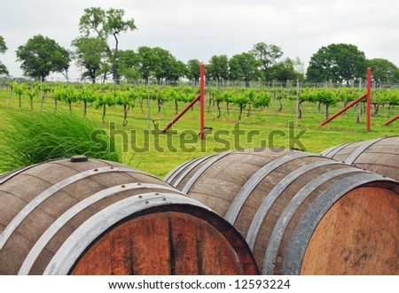 Large wine barrels sit in front of a rural vineyard - stock photo