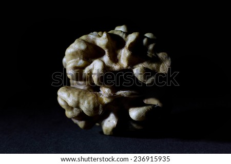 Large Wrinkled Edible Seed of a Walnut Isolated on Black Background - stock photo
