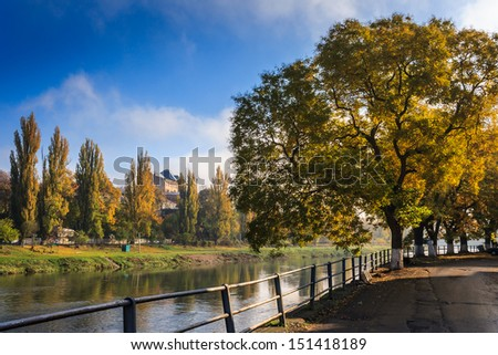 large yellow crowns of trees at the edge of embankment in the early autumn