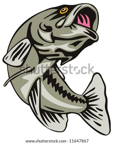Largemouth bass leaping - stock photo