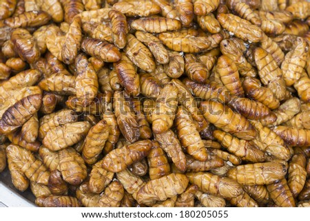 Larva grilled - stock photo