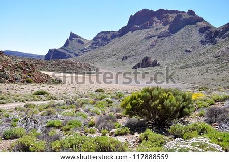 Las Canadas del Teide range, Teide National Park, Tenerife, Canary islands, Spain - stock photo