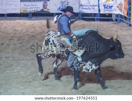 LAS VEGAS - MAY 16 : Cowboy Participating in a Bull riding Competition at the Helldorado days Rodeo , A professional Rodeo held in Las Vegas , Nevada on May 16 , 2014  - stock photo