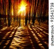 Last rays of the sun in winter forest. - stock photo