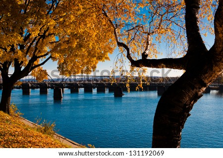 Late autumn color as seen in Riverfront Park along the Susquehanna River in Harrisburg, PA. - stock photo