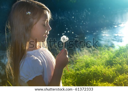 Late summer dreams - stock photo