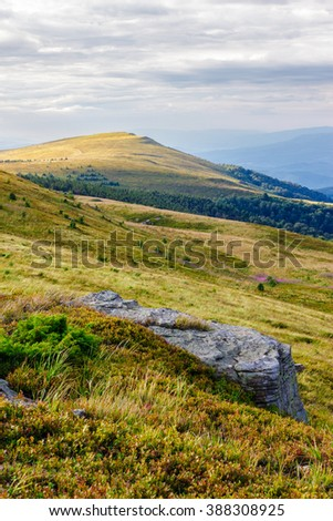 late summer mountain landscape. stone in the grass on the hillside - stock photo