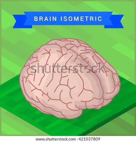 Lateral of human brain flat isometic illustration. Human brain flat isometric pictogram. - stock photo