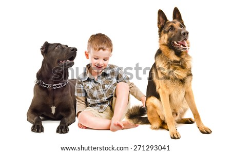 Laughing cute boy sitting with two dogs of breed Staffordshire Terrier and German Shepherd - stock photo
