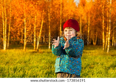 Laughing three years old little boy standing on the lawn in the autumn park and clapping hands - stock photo