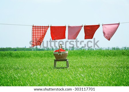 Laundry line with clothes in field - stock photo
