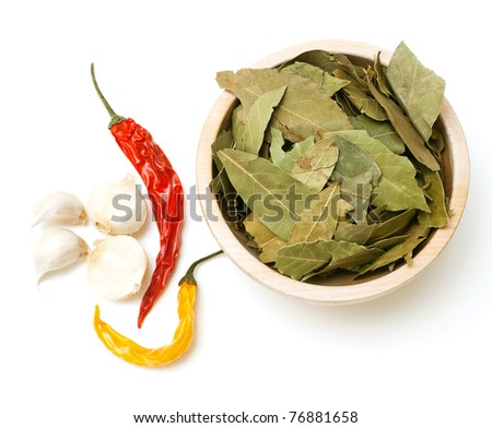 laurel leafs, hot pepper and garlic on white background - stock photo