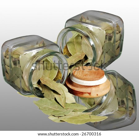 laurel leaves in glass jar