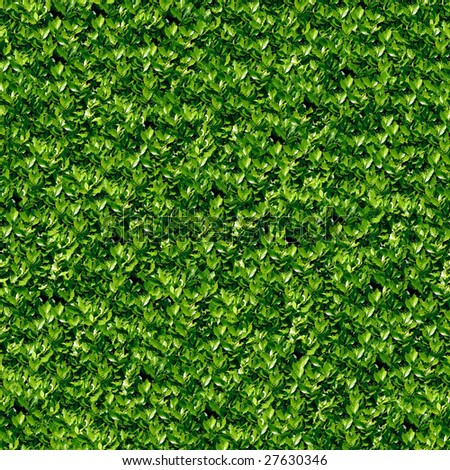 Laurel seamless background. (See more seamless backgrounds in my portfolio). - stock photo
