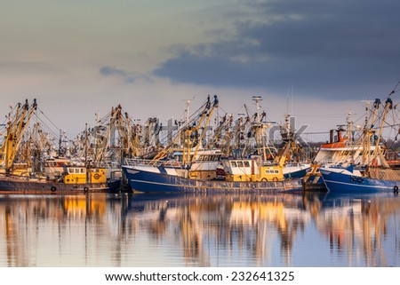 Lauwersoog harbours one of the biggest fishing fleets of the Netherlands. The fishery concentrates mainly on the catch of mussels, oysters, shrimp and flatfish in the Waddensea - stock photo