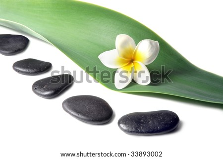Lava Stones with frangipani (plumeria)  flower on the Leaves - stock photo
