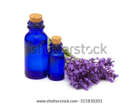 Lavender and the vintage bottles - stock photo