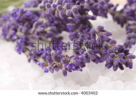 lavender bath items. salt, and fresh flower