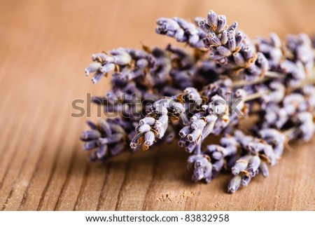 Lavender bunch on the wooden table closeup - stock photo