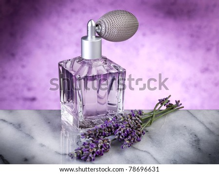 lavender essence - stock photo
