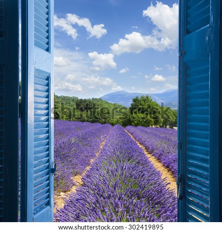 Lavender field with summer blue sky through wooden shutters, France - stock photo