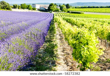 Rhone Alpes Stock Images Royalty Free Images Amp Vectors