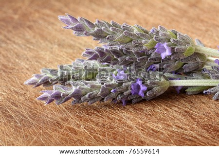 Lavender flower over wood background.With copy-space - stock photo
