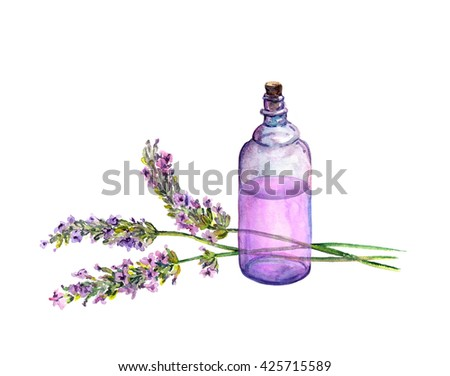 Lavender flowers and oil perfume bottle. Watercolor for alternative medicine, massage therapy