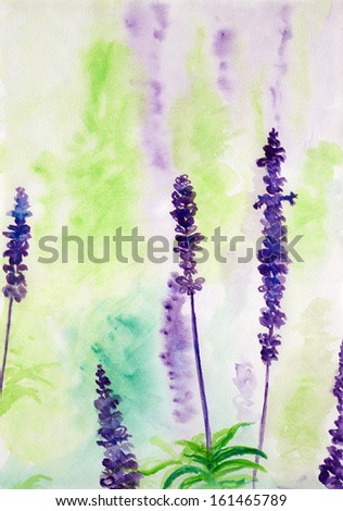 Lavender flowers blooming in a field during summer,watercolor illustration - stock photo
