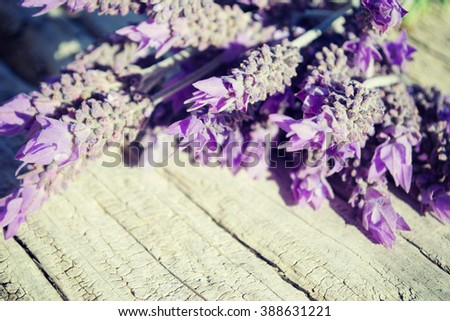 Lavender flowers on a wooden background - stock photo