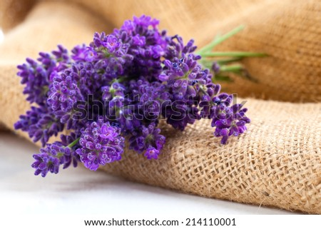 lavender flowers on the burlap, over white background - stock photo