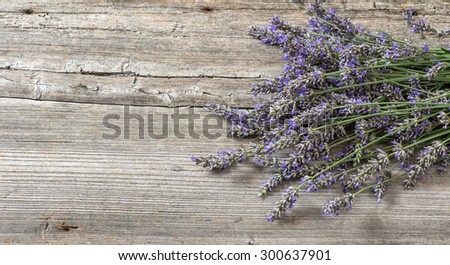 Lavender flowers on wooden background. Vintage style still life. Selective focus - stock photo