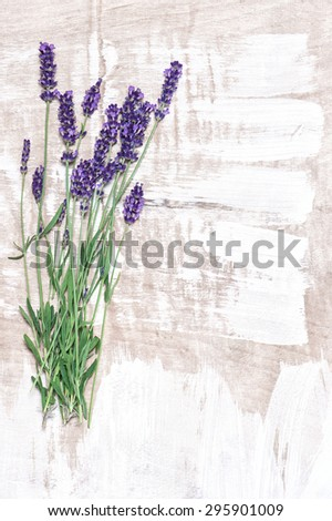 Lavender flowers over rustic wooden background. Fresh blossoms. Country style decoration - stock photo