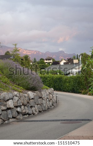Lavender growing besides a scenic road in Switzerland - stock photo