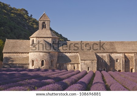 Lavender in front of the abbaye de Senanque in Provence - stock photo