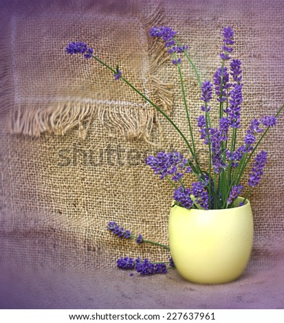 Lavender in yellow vase on table - stock photo