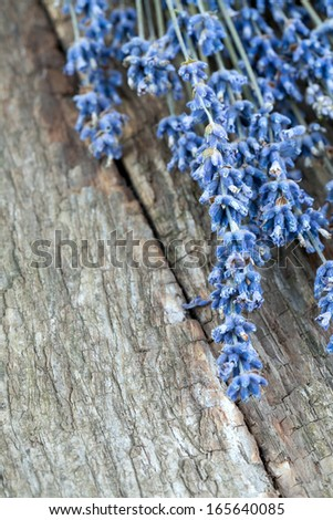 lavender on wooden surface - stock photo