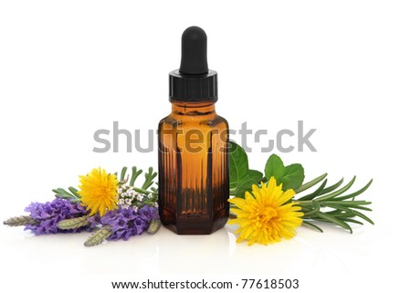 Lavender, rosemary, mint and dandelion flower and herb leaf sprigs with essential oil brown glass bottle, isolated over white background. Herbs for skincare.