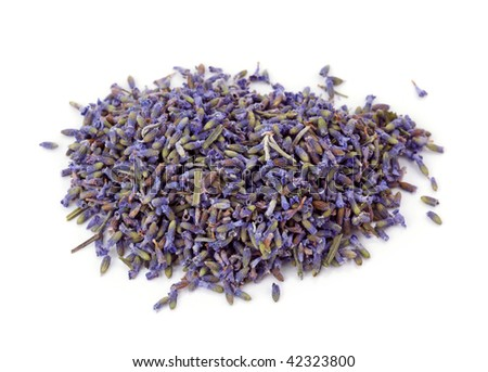Lavender tea isolated on the white background
