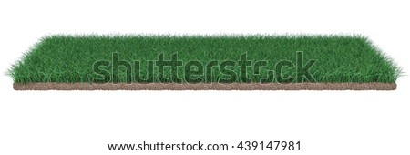 Lawn and grass good render